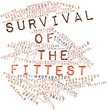 Word cloud for Survival of the Fittest