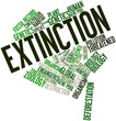 Word cloud for Extinction
