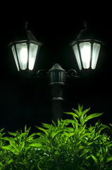 Night picture of the lamp in the park