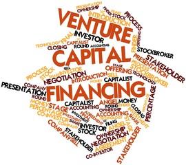 Word cloud for Venture Capital Financing