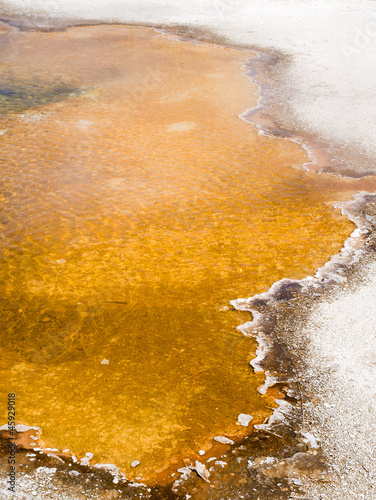 A mat of thermophilic bacteria at the edge of Emerald Pool