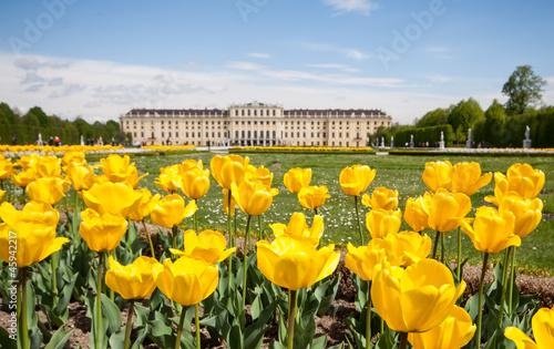 Schonbrunn Palace Gardens at Vienna, Austria