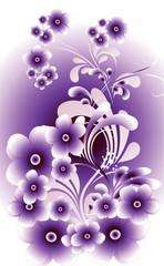 violet et lueurs