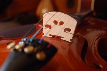 violon détail cordier