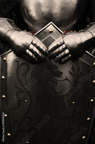 Knight - 45945454
