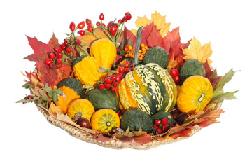 Zierkürbisse und Laub - Ornamental Gourds And Leaves