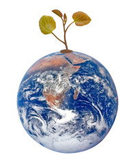 Planet earth as symbol of nature conservation.Elements of this i