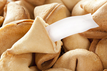 Fresh Made Fortune Cookie
