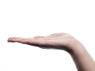 Woman hand presenting -flat- - isolated