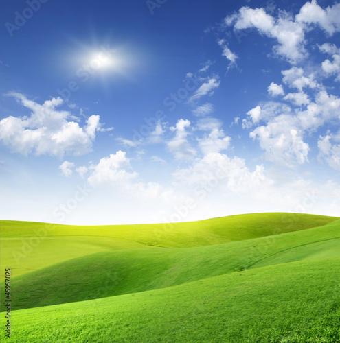 Fototapeten,sunlight,wiese,grün,gras
