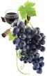 vigne, vin, raisin