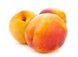 Three nectarine fruit