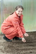 woman  sows seeds in soil