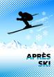 skisport - 5