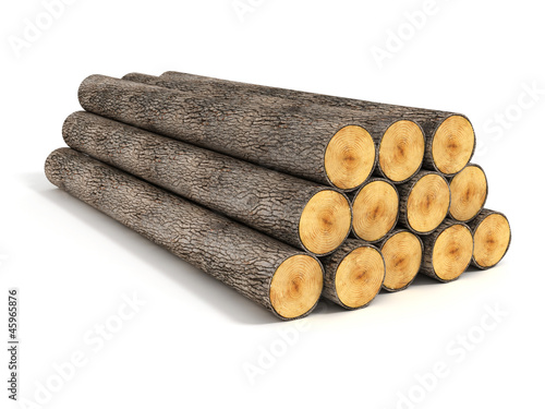 stacked tree logs