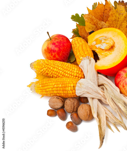 autumn fruits and vegetables on aging leaves