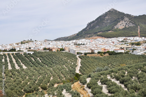 Panoramic view of Rute, Cordoba (Spain)