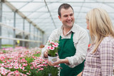Woman deciding on flower with employee
