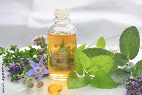 Natural fresh herbs - 45967623
