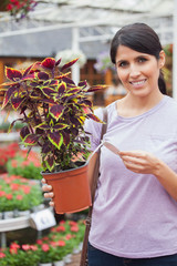 Woman reading the price of plant