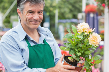 Male florist holding a flower