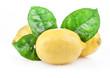 Fresh lemon with leaves, Isolated on white background