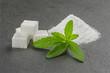 Steviablätter mit  Würfelzucker auf einer Schieferplatte