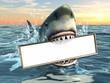 Shark advertising - 45973289