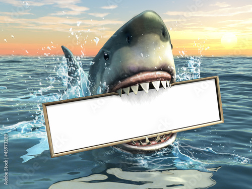 Shark advertising - 45973289