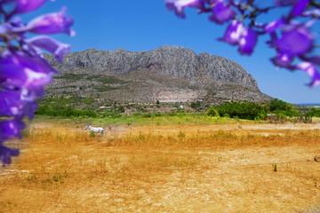 Beniarbeig view of Segaria mountain in Alicante