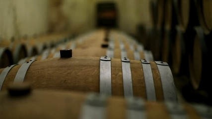 Oak barrels of wine in the cellar