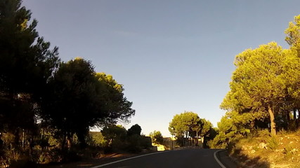 Forest road POV from car moving at sunset, timelapse