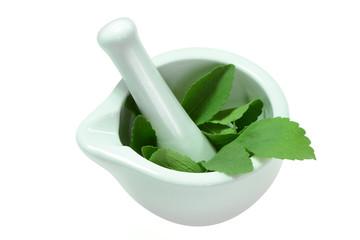 Stevia 6