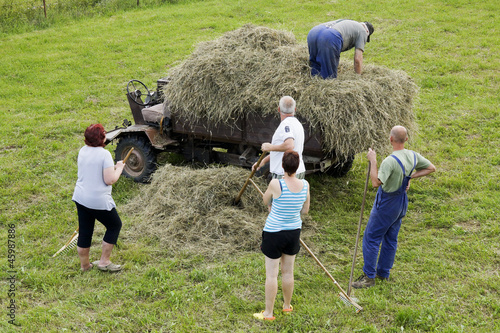 Family gathering hay