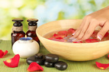 spa treatments for female hands,  on green background - 45992863