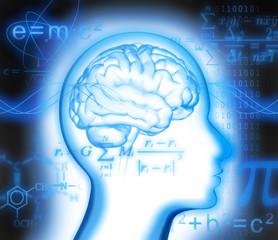 Intelligenz 5