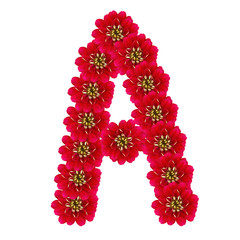 Letter A from red flowers