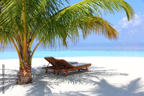 canvas print picture Sunbeds