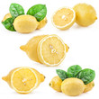 Collection of lemons isolated on white background
