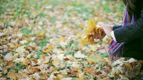 Girl gathers yellow leaves in autumn
