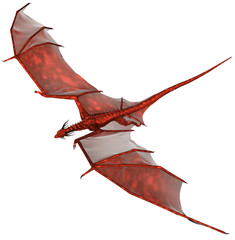 Red Dragon, 3d rendered red fantasy dragon