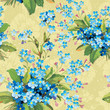 Illustration texture with forget-me-not