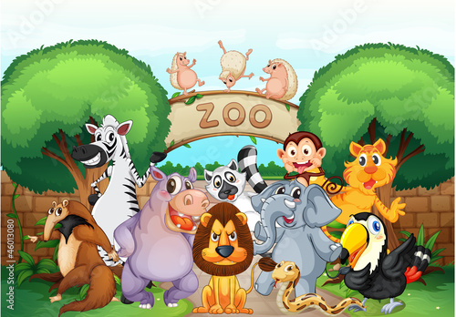 Poster Zoo zoo and animals