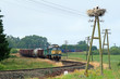 Rural landscape with freight train
