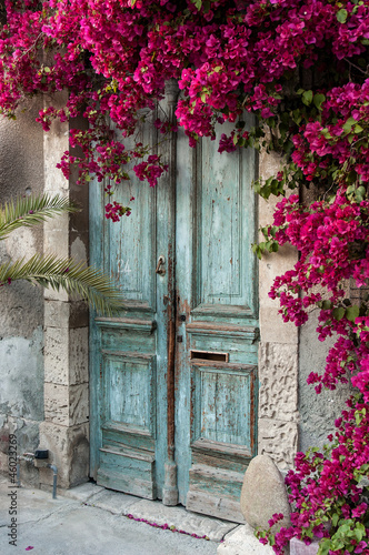 Leinwanddruck Bild Old wooden door with bougainvillea in Cyprus
