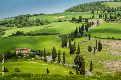 Road with curves and cypresses in Tuscany, Italy - 46023610