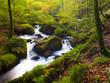 Fototapeten,cascade,england,naturschutzgebiet,landschaftlich