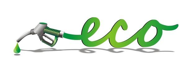 Ecologico_3