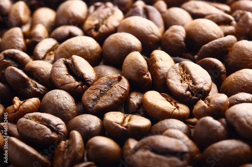coffee beans background macro photo