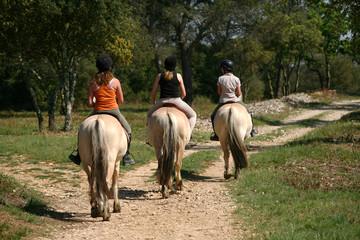 Randonnée à cheval - Tourisme nature